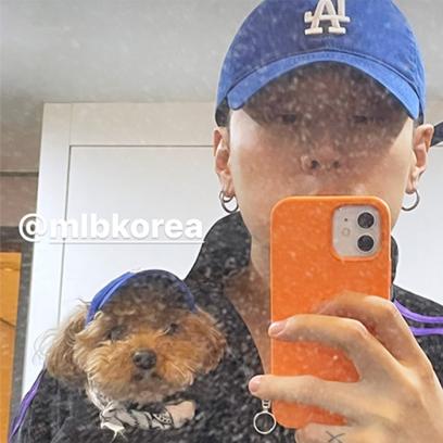 PH-1과 홀리 시밀러룩 MLB PET & MLB CAP