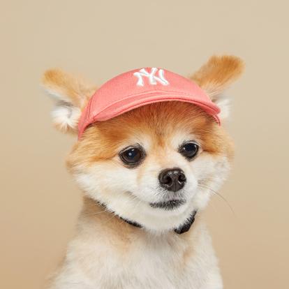 [PET] 베이직 로고 캡 뉴욕양키스