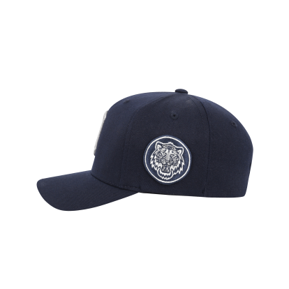 DETROIT TIGERS CIRCLE CURVED CAP
